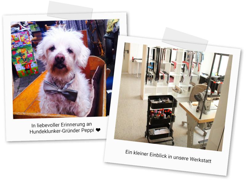 hundeklunker-ueber-uns-polaroids-3