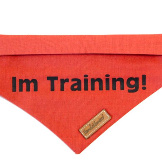 Muster Im Training