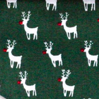 Muster Rudolf