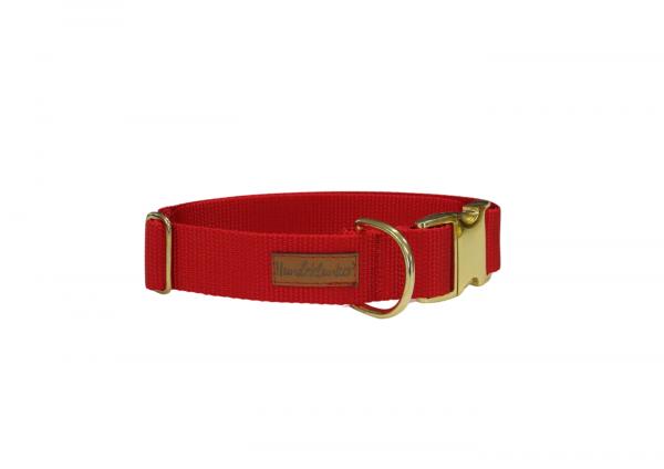 Halsband Uni Rot GOLD