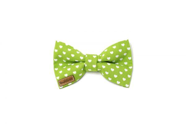 Fliege Valentin grün